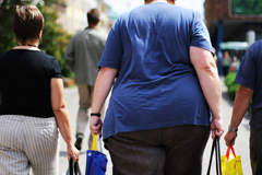 038_insulin_resistance_obese